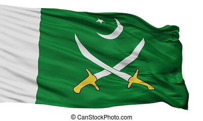 Pakistani Army Flag Isolated Seamless Loop - The Pakistani...