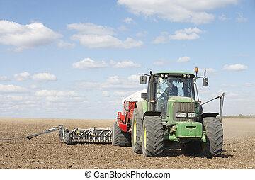 palántázás, elvet, traktor, mező