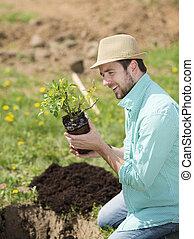 palántázás, ember, kert, fiatal