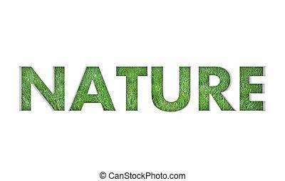 palabra, naturaleza, natural, ilustración, mundo, pasto o césped, 3d