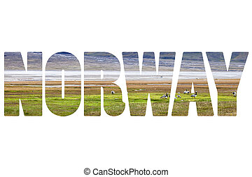 palabra, noruega, encima, spitsbergen, natural, world.