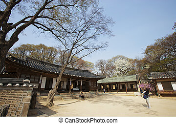 Palace in south korea, Changdeokgung