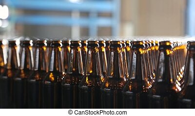 palack, kézbesítő, pohár, sör, belt., üres