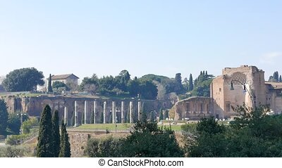 Palatine Hill and the Colosseum. Rome, Italy