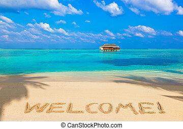 palavra, bem-vindo, praia