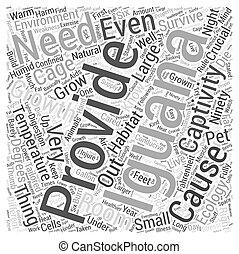 palavra, conceito, ecologia, nuvem, iguanas
