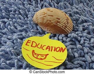 palavra, educação