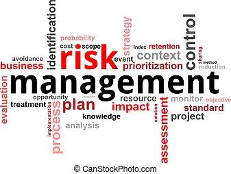 palavra, nuvem, -, risco, gerência