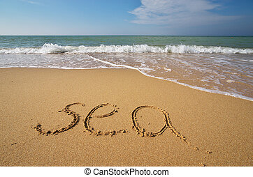 palavra, praia, mar