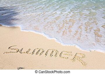 palavra, verão, ligado, praia, -, férias, conceito, fundo