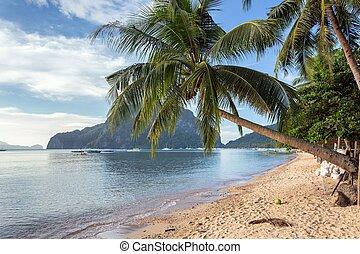 Palawan tropical beach