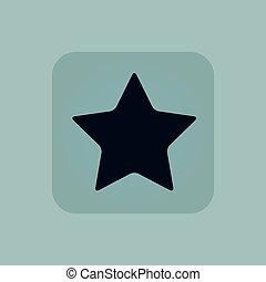 Pale blue star icon