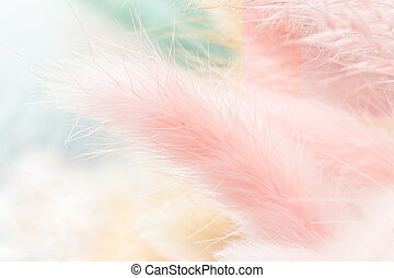 Pale pink, blue and beige colored fluffy dried weeds as background. Closeup view