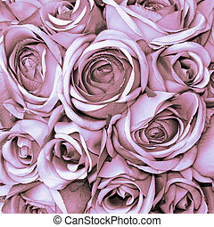 pale pink rose pattern - pink rose background...