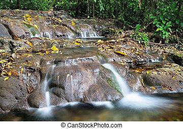palenque, 滝, motiepa, メキシコ\