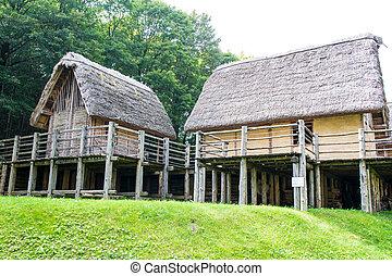 paleolithic, pile-dwelling