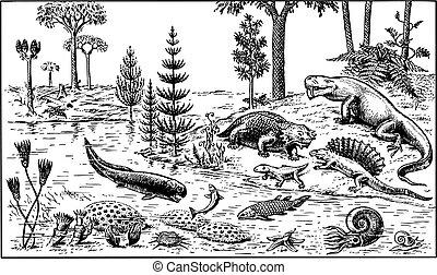 Many different animals of paleozoic era