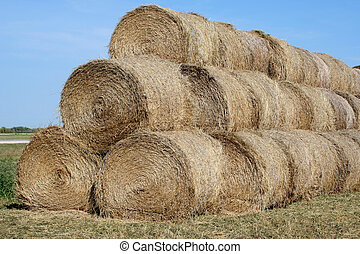 Pales of hay - These is a pile of hay I saw when driving...