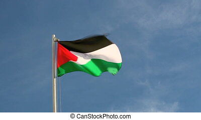 Palestine flag in front of a blue sky