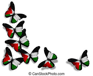 palestinien, papillons, isolé, drapeau, fond, blanc