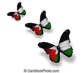 palestinien, papillons, trois, isolé, drapeau, blanc