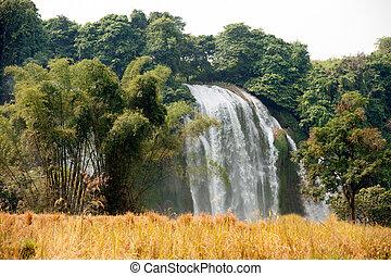 Palha, campo, Cachoeira, gioc, frente, proibição, Vietnã,...