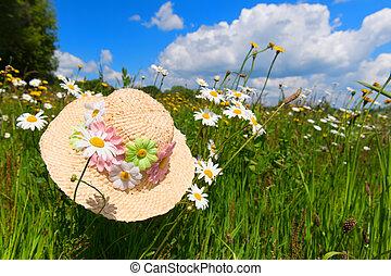 palha, chapéu verão, em, flor, campo