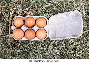 palha, ovos, caixa papelão