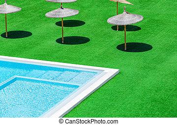 palha, verde, guarda-chuvas, capim, piscina, natação