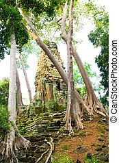 palilay, 寺院, カンボジア, preah