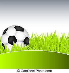 palla, calcio, erba verde