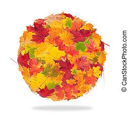 Palla, Estratto, isolato, autunno, fondo, bianco