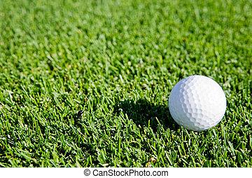 palla, golf, fondo