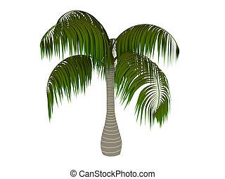 Palm 3d