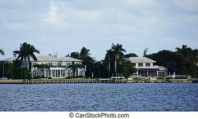 palm, aanzicht, strand, florida, west