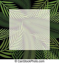 palm, achtergrond