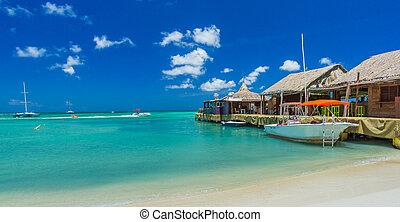 Palm beach at Aruba island