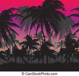 palm beach vector art