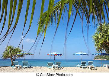 View of nice empty sandy beach with some palms around