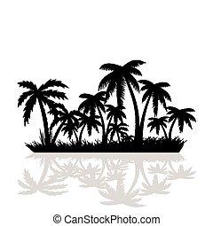 palm, bomen.