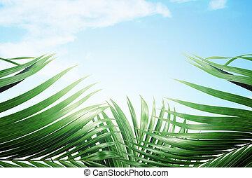 Palm Sunday concept