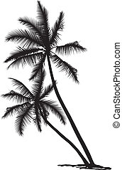 Palm - black and white vector illustration of two palms