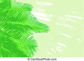 Palm fronds - Background of coconut palm fronds and grunge