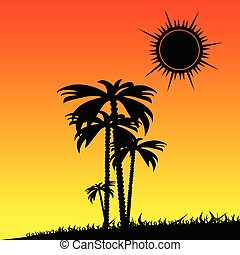palm in the nature color vector