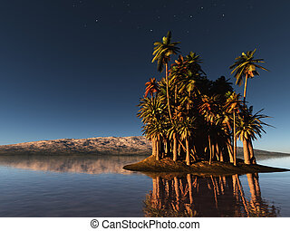 palm island at night