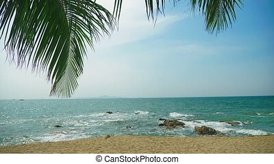 Palm leaf on a white tropical beach against the background...