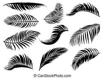 Palm Leaf silhouette.
