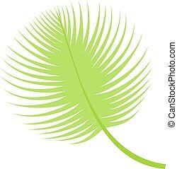 Palm leaf vector illustration.