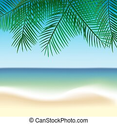 Palm leaves and beach
