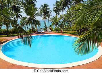 palm leaves in front of pool on tropical resort